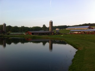 Tioga County Farms